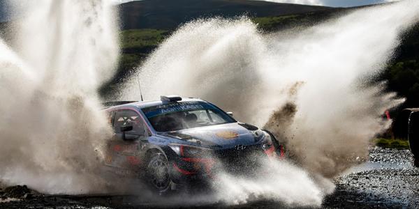 ¡Gana un año de WRC+ Live gratuito con A Todo Motor!