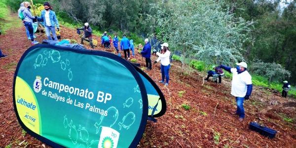 Acción solidaria FALP y BP